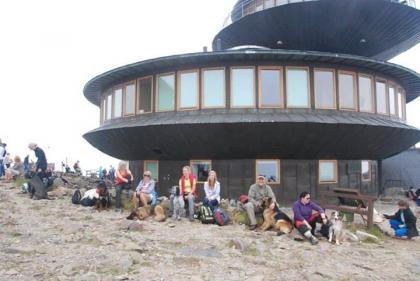 Obóz - Wakacje z Psem w Karpaczu